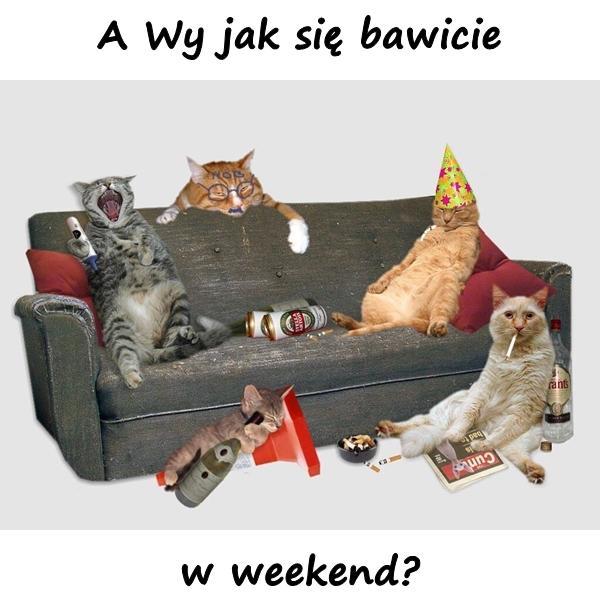 A Wy jak się bawicie w weekend?