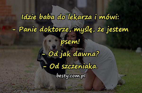 Idzie baba do lekarza i mówi: - Panie doktorze, myślę, że jestem psem! - Od jak dawna? - Od szczeniaka.