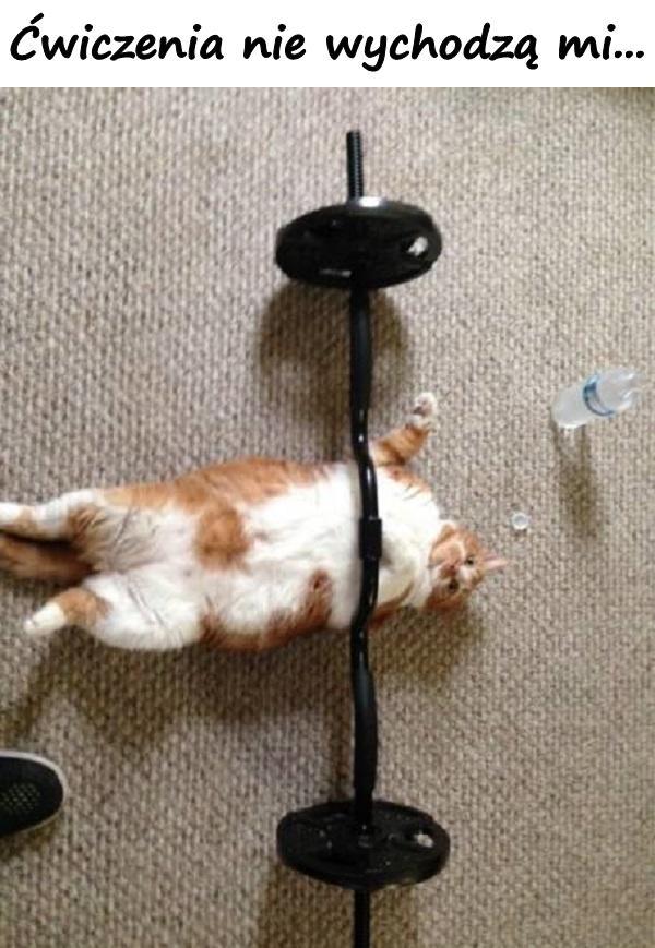 Ćwiczenia nie wychodzą mi...