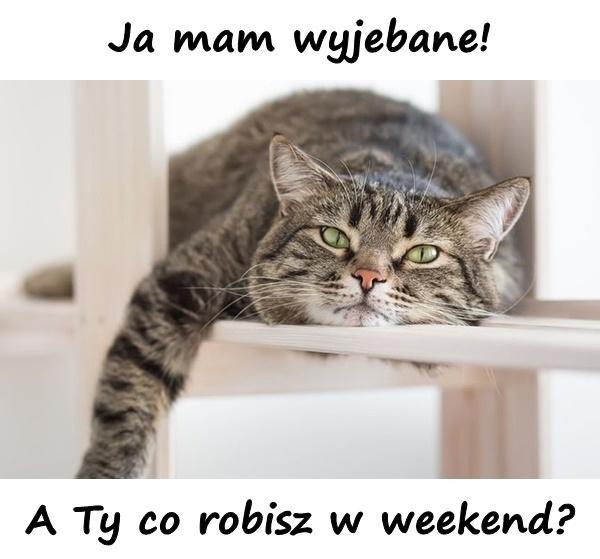 Ja mam wyjebane! A Ty co robisz w weekend?