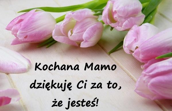 Podziękowania życzenia Kartka Na Dzień Matki 26maja