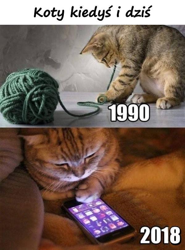Koty kiedyś i dziś