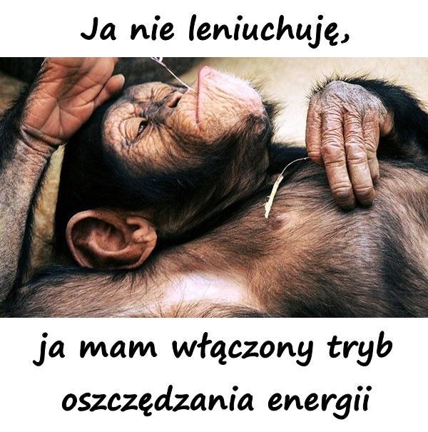 Ja nie leniuchuję, ja mam włączony tryb oszczędzania energii
