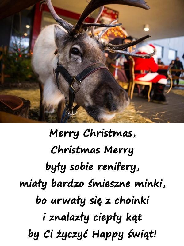 Merry Christmas, Christmas Merry były sobie renifery, miały bardzo śmieszne minki, bo urwały się z choinki i znalazły ciepły kąt by Ci życzyć Happy świąt!
