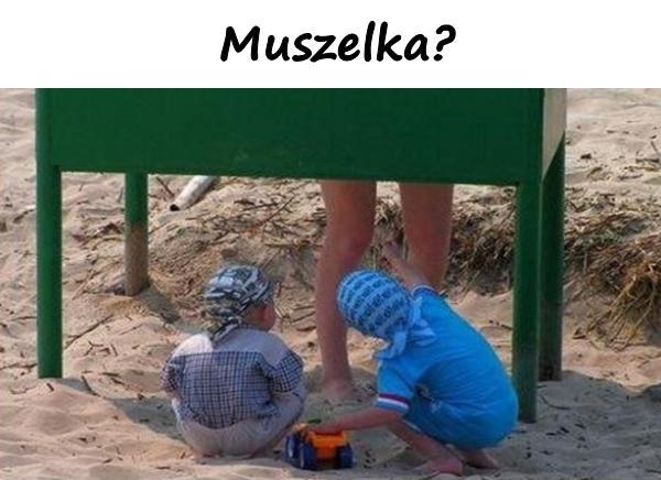 Muszelka?