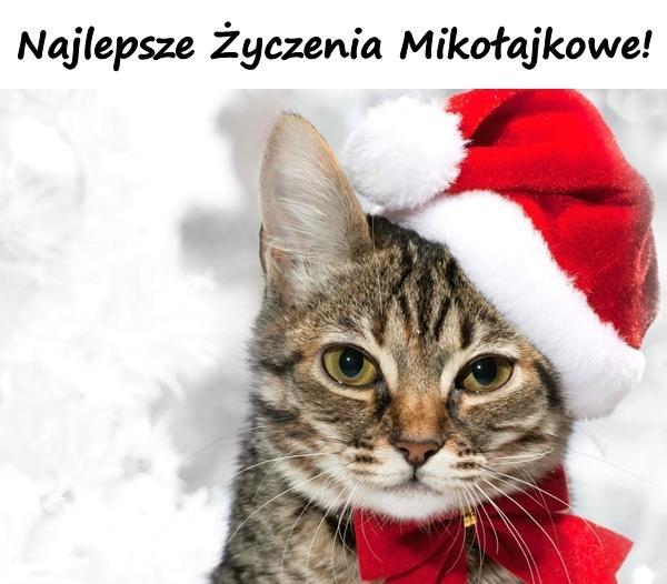 Najlepsze Życzenia Mikołajkowe!