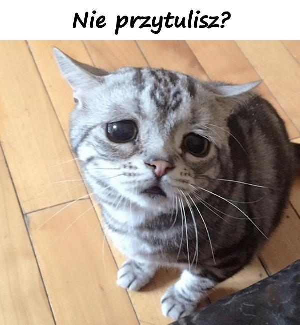 Nie przytulisz?