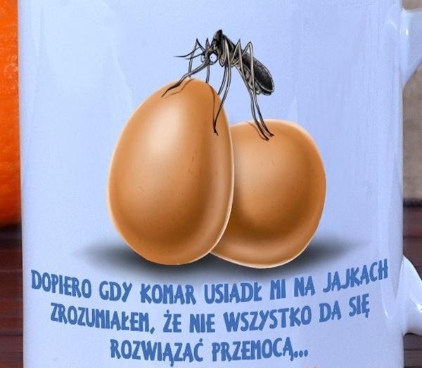 Stare chińskie przysłowie mówi: Dopiero kiedy komar usiądzie Ci na jajkach zdasz sobie sprawę, ze nie wszystko da się rozwiązać przemocą.