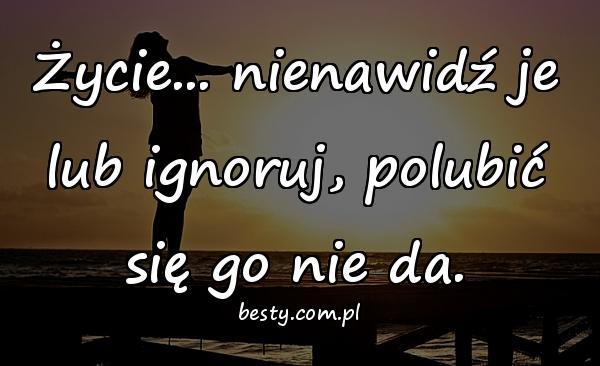 Życie... nienawidź je lub ignoruj, polubić się go nie da.