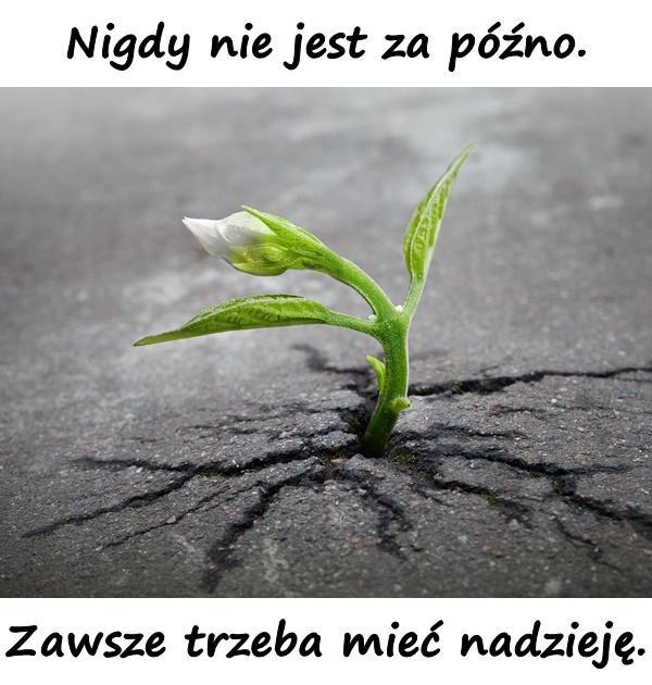 Nigdy nie jest za późno. Zawsze trzeba mieć nadzieję.