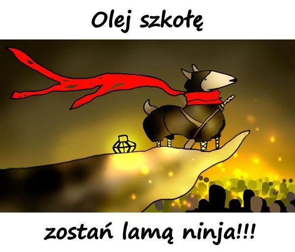 Olej szkołę, zostań lamą ninja!!!