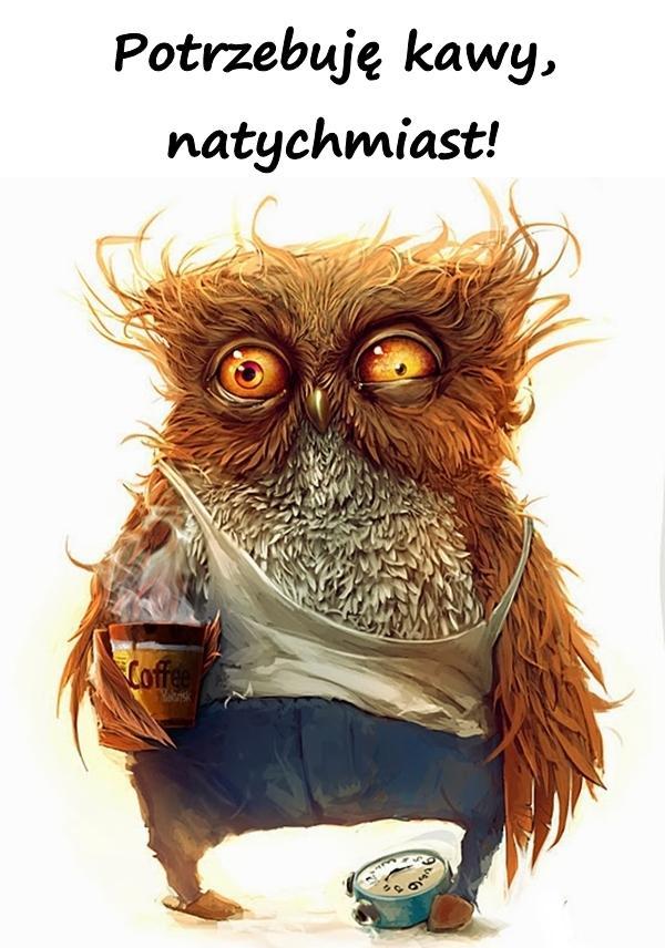 Potrzebuję kawy, natychmiast!