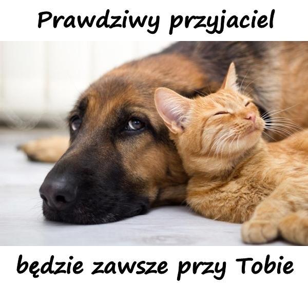Prawdziwy przyjaciel będzie zawsze przy Tobie