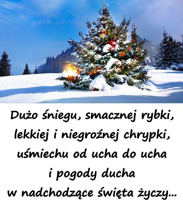 Wiersz życzenia świąteczne Na Boże Narodzenie Na Besty 8