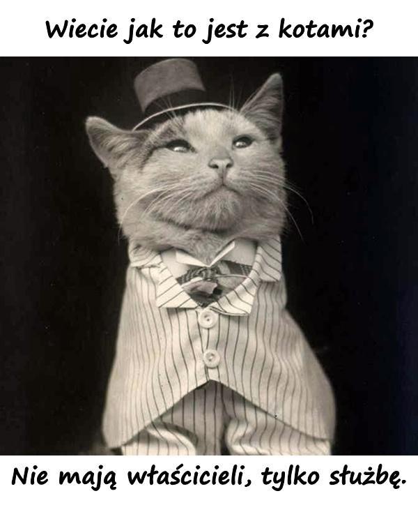 Wiecie jak to jest z kotami? Nie mają właścicieli, tylko służbę.