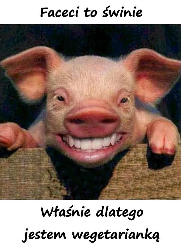 Faceci to świnie! Właśnie dlatego jestem wegetarianką