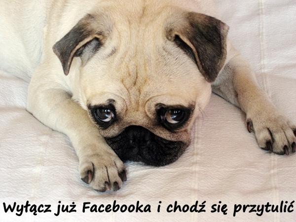 Wyłącz już Facebooka i chodź się przytulić.
