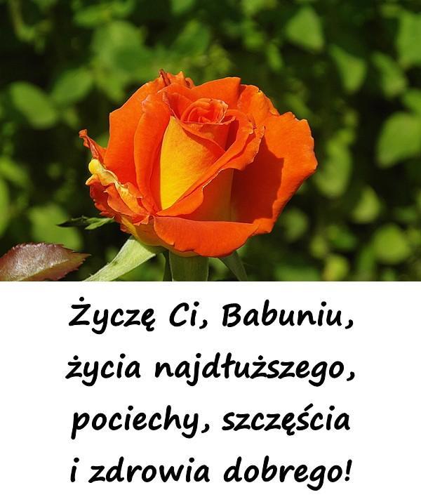 Życzę Ci, Babuniu, życia najdłuższego, pociechy, szczęścia i zdrowia dobrego!