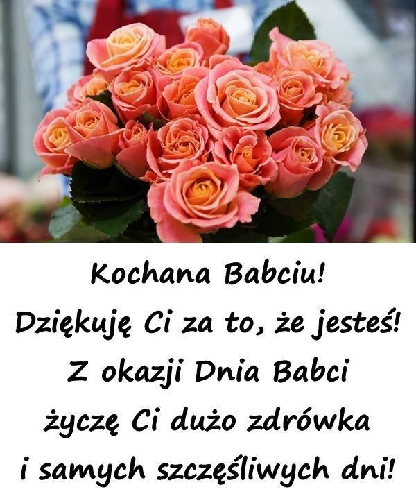 Kochana Babciu! Dziękuję Ci za to, że jesteś! Z okazji Dnia Babci życzę Ci dużo zdrówka i samych szczęśliwych dni!