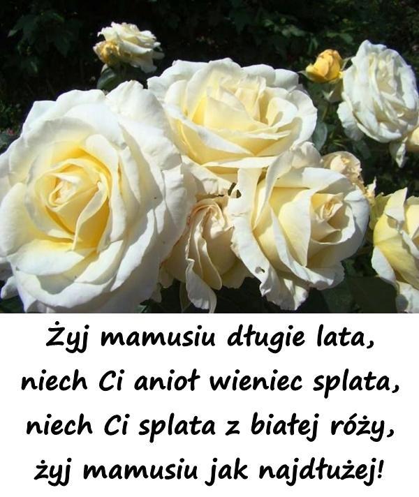 Wierszyki życzenia Na Dzień Matki 26maja Besty Wiersz