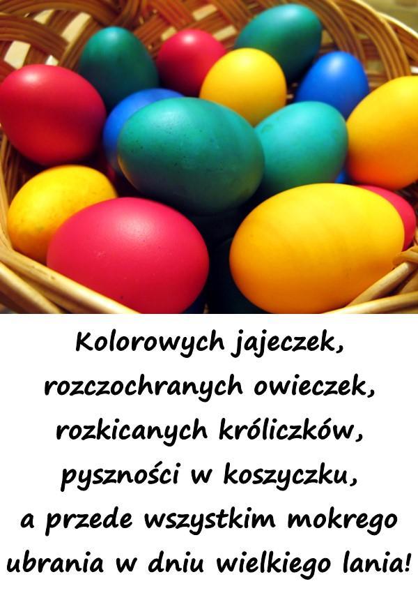 Kolorowych jajeczek, rozczochranych owieczek, rozkicanych króliczków, pyszności w koszyczku, a przede wszystkim mokrego ubrania w dniu wielkiego lania!