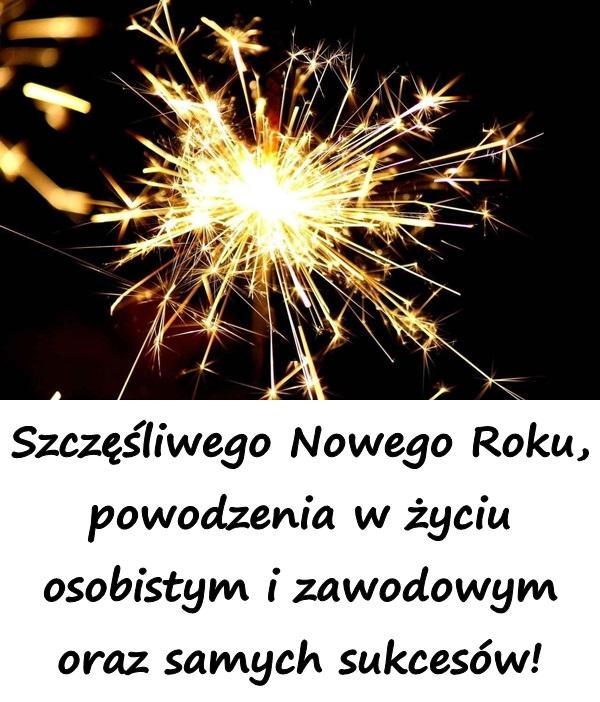Szczęśliwego Nowego Roku, powodzenia w życiu osobistym i zawodowym oraz samych sukcesów!