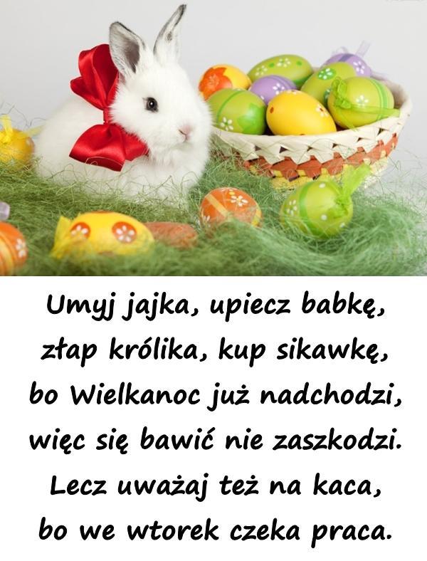 Umyj jajka, upiecz babkę, złap królika, kup sikawkę, bo Wielkanoc już nadchodzi, więc się bawić nie zaszkodzi. Lecz uważaj też na kaca, bo we wtorek czeka praca.
